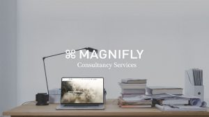 Magnifly---Consultancy-Services